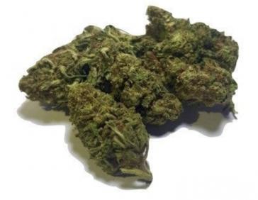 Dinamed cbd hemp flower uk legal weed
