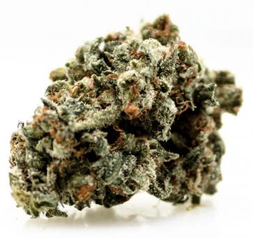 Lemon Haze Hemp Bud legal weed UK