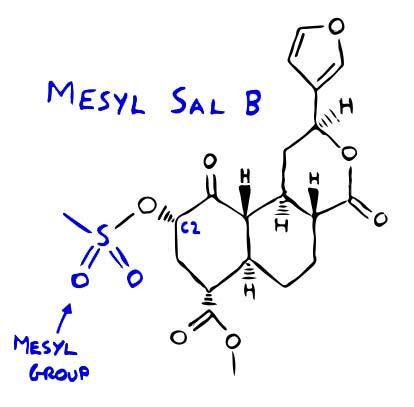 Figure 1 - Mesyl Sal B