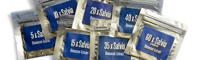 Salvia Extracts
