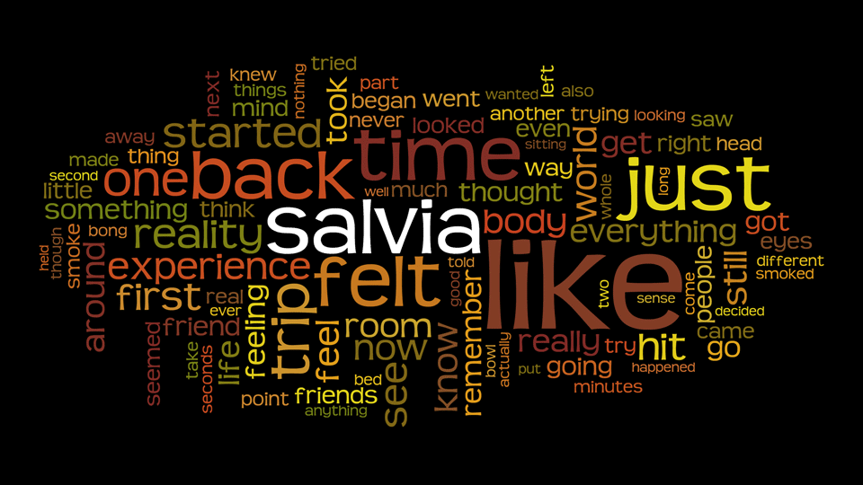 Salvia Trip Wordcloud